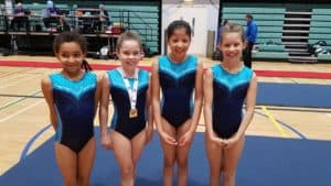 Regional Novice Floor and Vault Competition