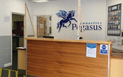 COVID-19 Pandemic – Second temporary closure of Pegasus
